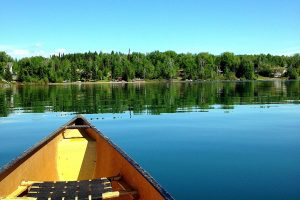 10th August - Susan Tardif - Canoe View Bays End