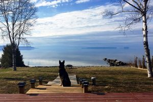 6th November - Kareen Paisley - Merged Horizon Cedar Bay