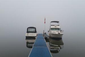 Amy Kembel - Foggy Morning