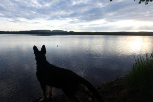 Amy Kembel - Marie Louse Lake